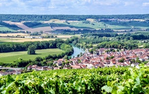 Wineday in Champagne | From Paris by Wine Passport