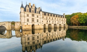 Loire Valley from Paris: Guided Tour + Wine Tasting