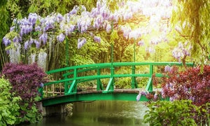 Full Day Tour of Giverny Monet's Gardens and the Impressionisms Museum