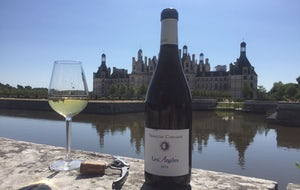 Wineday in Val de Loire | From Paris by Wine Passport