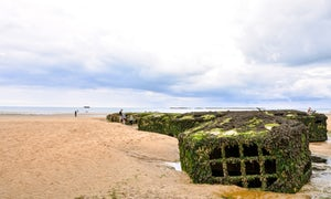 Guided Tour of Normandy D-Day Beaches from Paris