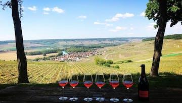 Journée en Champagne depuis Paris par Wine Passport