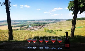 Wineday in Champagne from Paris by Wine Passport